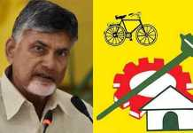 Chandrababu Naidu should do proper plan to raise TDP
