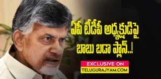 Chandrababu Naidu new plan for ap tdp chief