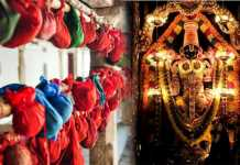 Sri Venkateswara Swami Mudupu History