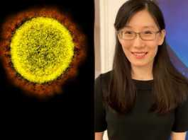 China virologist alleges that corona virus made in lab