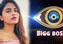 Bigg Boss 4 Telugu dethadi Harika Hot Dance In Task