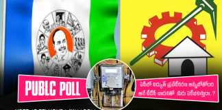 Poll On private electricity in Andhra pradesh