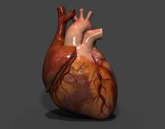 health tips for healthy heart in covid 19 situation