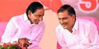 is harish rao is going to resign ?