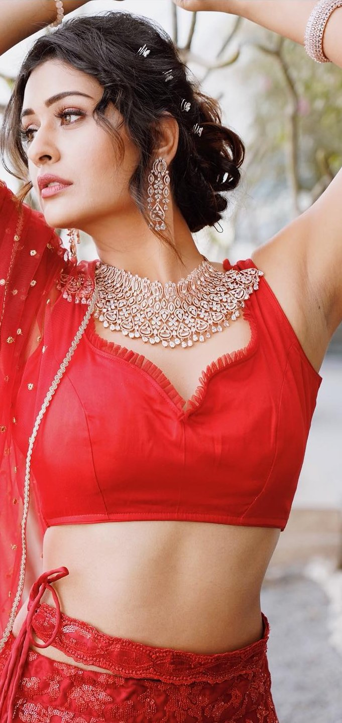Payal Rajput Red Dress Photos