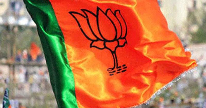 జీహెచ్ఎంసీ : బీజేపీ మేయర్ అభ్యర్థిగా రాధా ధీరజ్రెడ్డి