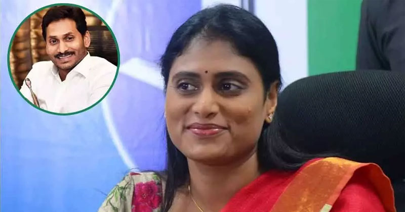 Will Sharmila'S Plan Work Out On Jagan ?