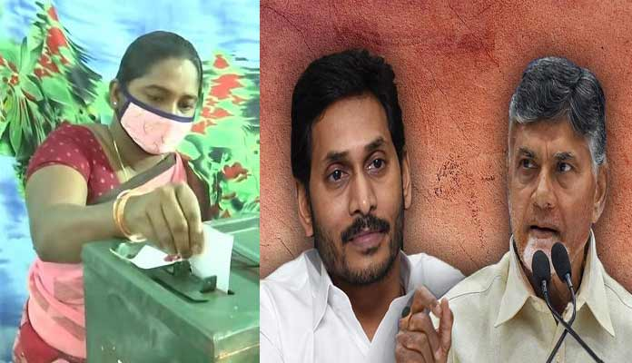 Voting And Political Fighting In Ap