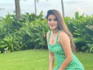 Glamorous Pics Of Nidhhi Agerwal 6 | Telugu Rajyam