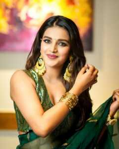 Glamorous Pics Of Nidhhi Agerwal 8 | Telugu Rajyam