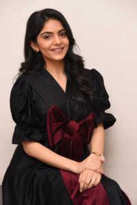 Misha Narang New Photoshoot 18   Telugu Rajyam